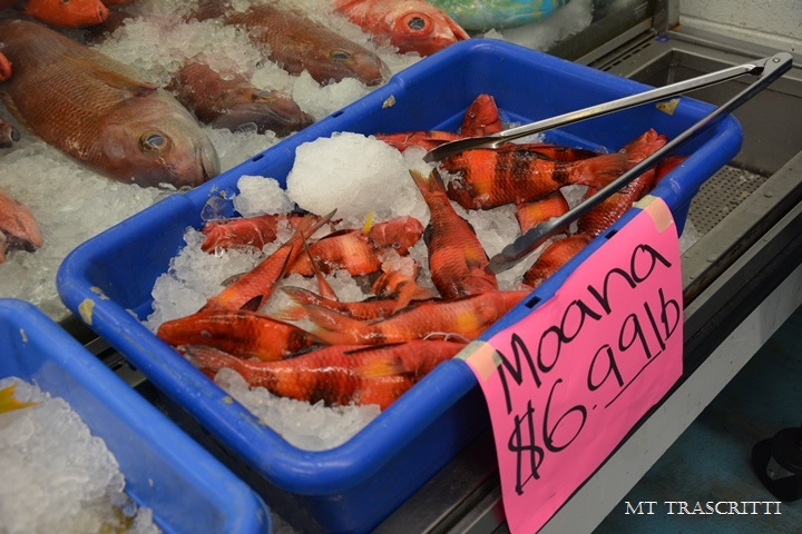 Hilo big island hawaii dr t 39 s food for thought for Kona fish market